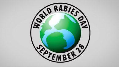 World Rabies Day 2019
